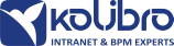 KOLIBRO - Intranet & BPM Experts